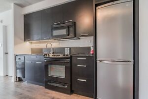 Griffintown 3 1/2 downtown 1 bedroom condo rent furnished