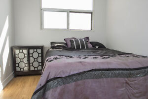 Large 2 Bed near Champlain/Elgin - Close to downtown Cambridge!