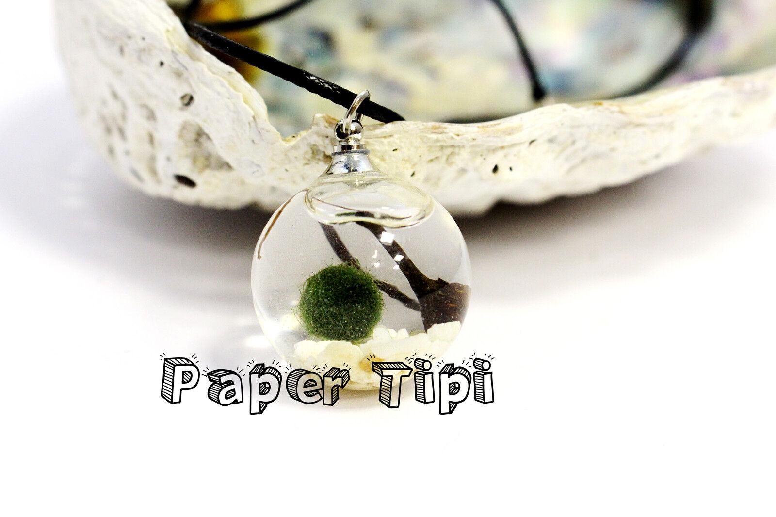 Paper Tipi