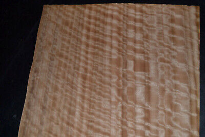 Eucalyptus Raw Wood Veneer Sheets 12 X 34 Inches   G7805-24
