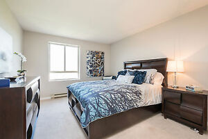 Huge Renovated Two Bedroom Suites - New Kitchens and Flooring! London Ontario image 7