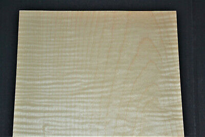Curly Maple Raw Wood Veneer Sheets 9 X 30 Inches 142nd   7717-6