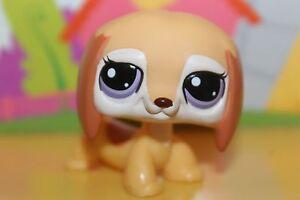 LPS Littlest Pet Shop Figur 2529 Hund Dackel / dog dachshund