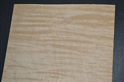 Curly Maple Raw Wood Veneer Sheets 6 X 31 Inches 142nd   7634-18