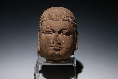 STONE BUDDHA HEAD FRAGMENT - 10 CENTURY A.D.