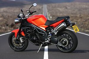 Triumph speed triple wanted