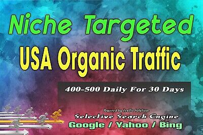 Niche Targeted Usa Organic Traffic