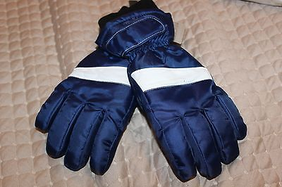 BNWT CANYON RIVER BLUES BOYS MEDIUM THINSULATE WINTER GLOVES BLUE & WHITE