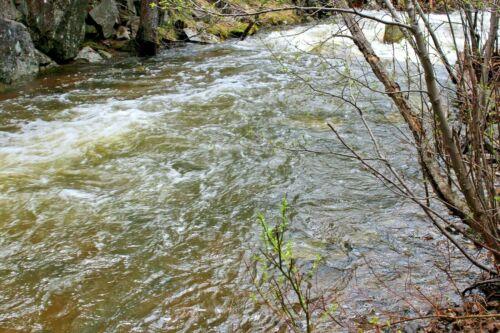 Montana Placer Gold Mine Ontario Creek Mining Claim MT Creek Panning Sluice Gems