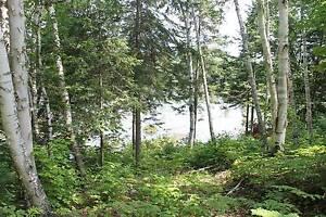 Terrain - à vendre - Otter Lake - 22183456