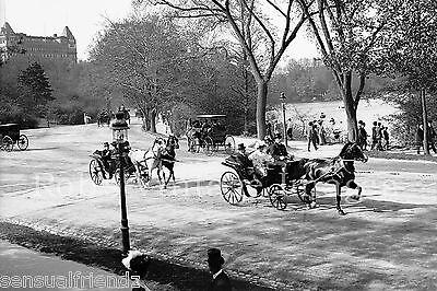 New York City Central Park photo 1896 Vintage Antique photo print Gilded Age