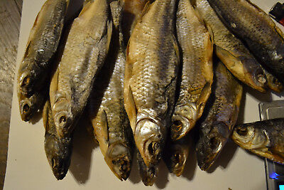 FISH Dried Salted VOBLA Baltic sea  Salted for Beer 1 pc
