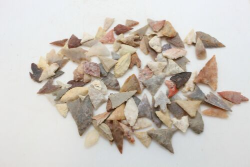 Ancient Neolithic Saharan Points - BAG OF 100 - 8,000 - 6,000 Years Old