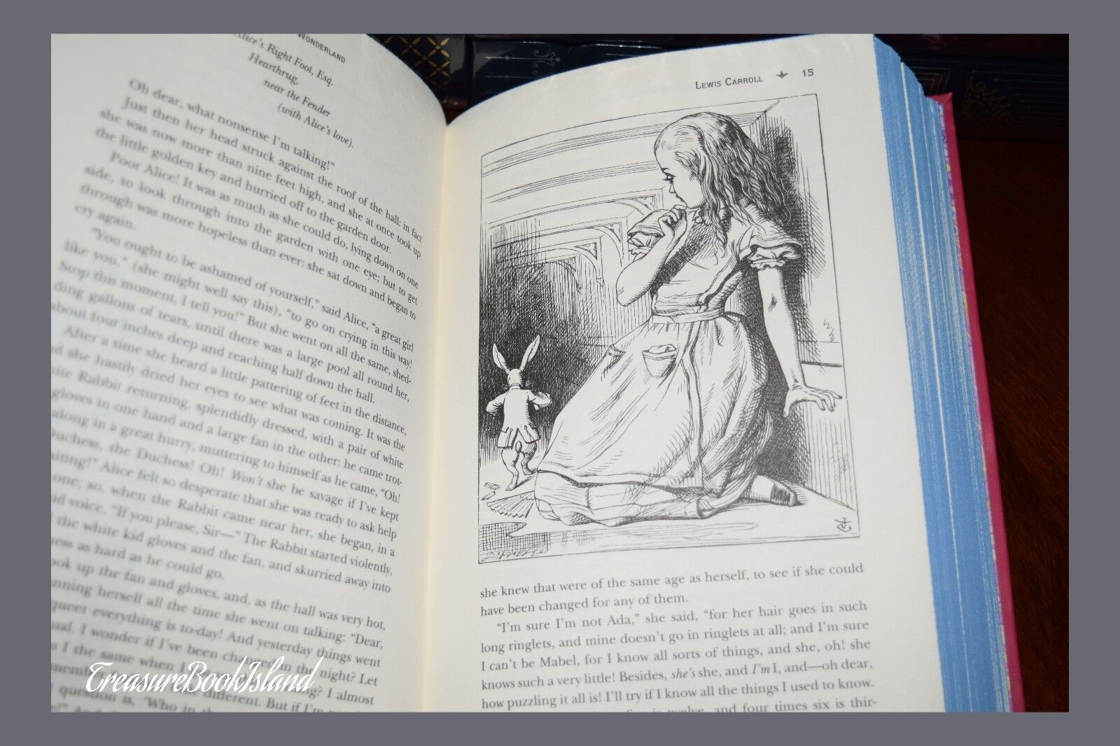 Alice in Wonderland & Through Looking Glass Carroll New Leather Bound Deluxe