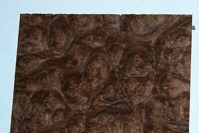 Walnut Burl Raw Wood Veneer Sheets 7.5 X 20 Inches 142nd Thick  4710-41