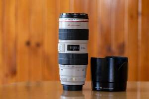 Canon EF 70-200mm f/2.8L IS USM Lens - RF Sony E mount - with hood