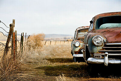 VLIES Fototapete-ROSTIGE AUTOS-(434V)-Oldtimer Vintage Automobil Car Veteran USA (Rostige Autos)
