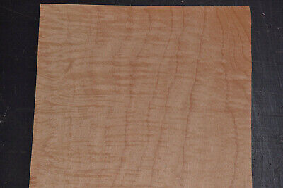 Curly Maple Raw Wood Veneer Sheets 9.5 X 22 Inches 142nd   7717-50