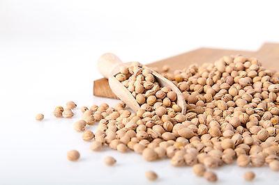 Kirschkerne, lose; helle Ware, wenig Bruchkern; 25 kg; 1,22€/kg