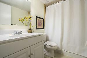 Newly Renovated 2 Bedroom, 2 Bathroom Apartments - Close to UWO London Ontario image 5