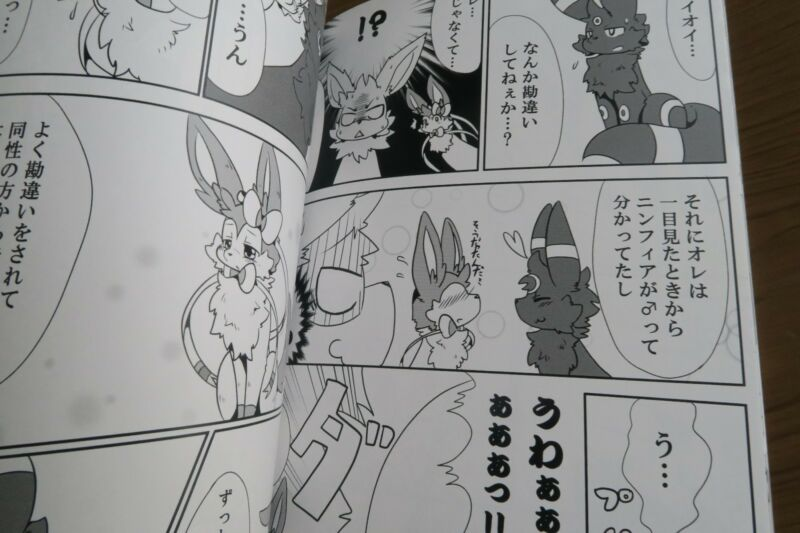 POKEMON Doujinshi Sylveon X Glaceon , Sylveon X Umbreon (B5 60pages) Sora furry