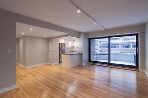 New Kitchen- 2 Renovated Baths- McGill / Concordia - Doorman