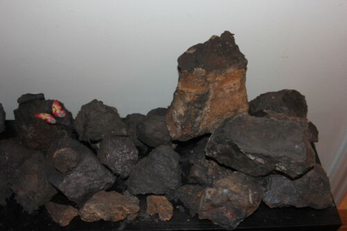 Magnetite all natural lodestone magnetic stone 1/8 pound lot US SELLER
