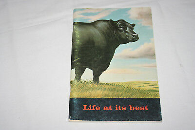 American Angus booklet Life at its Best cattle livestock (Life At Its Best)