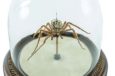 Insect Lab Authentic Wolf Spider Watch Hybrid Robot Collection
