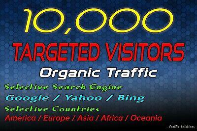 Drive 10k Targeted Web Traffic
