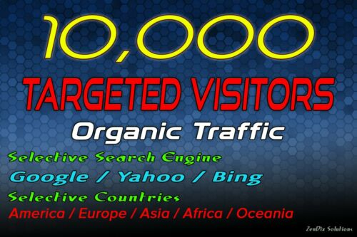 Drive 10k Targeted Web Traffic
