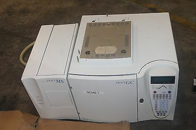 Thermo Finnigan Gas Chromatograph Trace Gc Trace Ms Nice