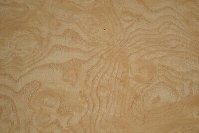 Ash Burl Raw Wood Veneer Sheets 9 X 15 Inches 142nd   G8629-40