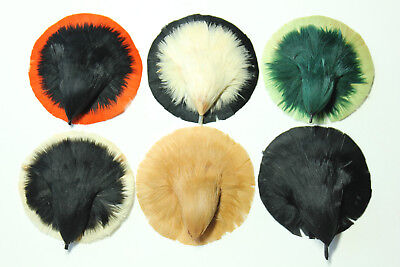 (NOS vintage millinery hat supplies 1920s made in Germany feather bird trims 3264)