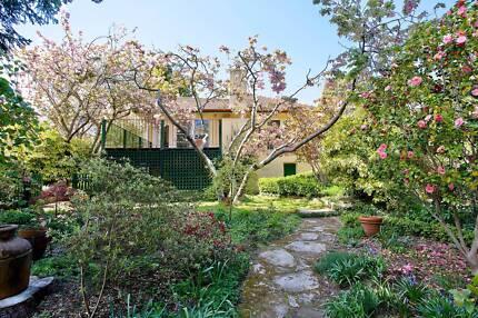 3 bedroom house plus garden studio for rent