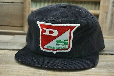 Vintage DS DAIRYLAND SEED SnapBack Trucker Hat Cap Patch LEGEND Made in USA