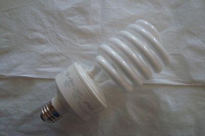 TCP 68942ED CFL Origin A Lamp - 150 Watt Equivalent (only 42W used) Soft White