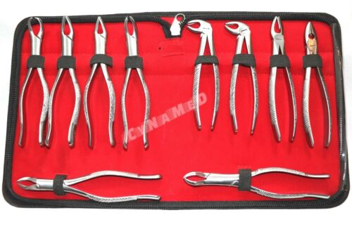 GERMAN STAINLESS  EXTRACTING FORCEPS EXTRACTION DENTAL INSTRUMENTS-SET OF 10 EA