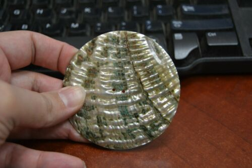 ROUND ABALONE SHELL SEWING TWO HOLES BUTTON 70MM #T-447