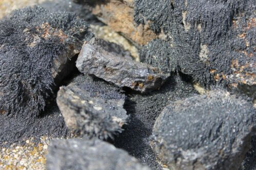 5 Magnetite Lodestone   Naturally Magnetic Stones, wicca, pagan, 6.5 OZ