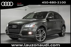 2016 Audi SQ5 3.0T TECHNIK CARBON NAV 21