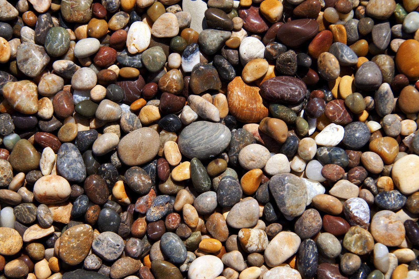 pebble art shop