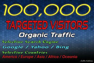 Drive 100k Targeted Web Traffic