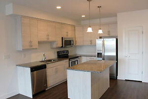 Condos by Dream! $2500 Off! Pet Friendly! - Only 1 Unit Left!