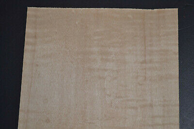 Curly Maple Raw Wood Veneer Sheets 6 X 33 Inches 142nd   8635-50