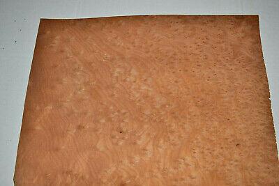 Madrona Burl Raw Wood Veneer Sheets 12 X 18 Inches 142nd G8627-46