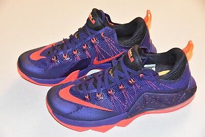 3b0bea485c8 Brand New Without Box LEBRON JAMES NIKE THE TWELVE purple US men s size 11  shoes