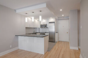 Fully Renovated Downtown Two Bedroom suite - 4 1/2 centre-ville