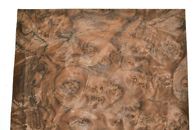 Walnut Burl Raw Wood Veneer Sheets 10 X 17.5 Inches 142nd Thick  E4704-45