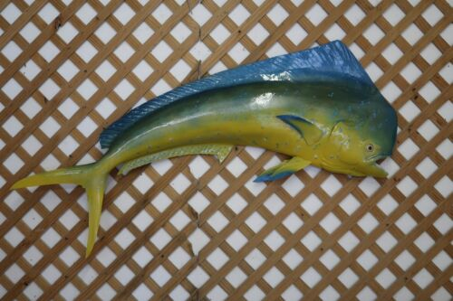 "Mahi-Mahi (Dolphin) 60"" Half Mount"